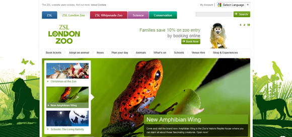 30 Wildlife Animals Zoo and Sanctuary Website Designs for Your Inspiration