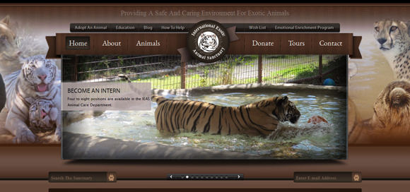 30 Wildlife Animals Zoo & Sanctuary Website Designs