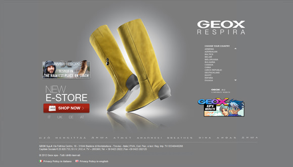 20+ Top Branded Shoes Ecommerce Website Designs for Your Inspiration