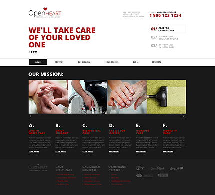 Ascetic Medical WordPress Theme